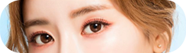 眼皮部位切除法